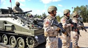 латвия, игил, армия