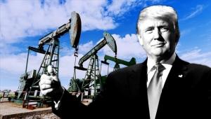 сша, Трамп, снижение цен на нефть, новости экономики, добыча, ОПЕК, россия, РФ, рынок