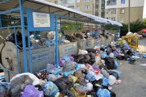 Львов, мусор, Садовой, Синютка