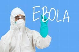Франция, Гвинея, эбола, центр, строительства, вирус, борьба