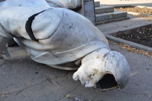 никополь, происшествия, новости украины, новости днепропетровска, памятник ленину