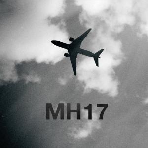 МН-17, Нидерланды, расследование по МН-17, Петр Порошенко