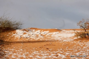 климат, погода, природа, снег, Сахара, происшествия