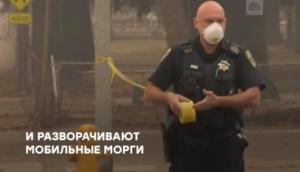 екатерина золотарева, фото, сша, российские сми, калифорния, лесные пожары