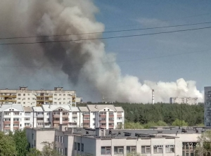 пожар, северодонецк, гсчс, фото, луганская область, донбасс, лес, лесные пожары