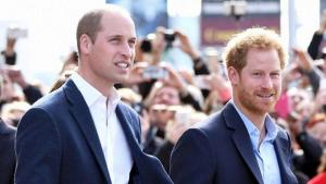 принц Уильям, принц Гарри, Меган Маркл, интервью, таблоиды
