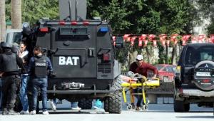 тунис, терроризм, происшествия, туристы, аниматор