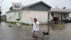 техас, сша, ураган харви, погибшие, раненые, жертвы урагана харви, фото