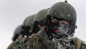 германия, украина, миротворцы, донбасс, восток украины, гройсман, мельник, штайнмайер
