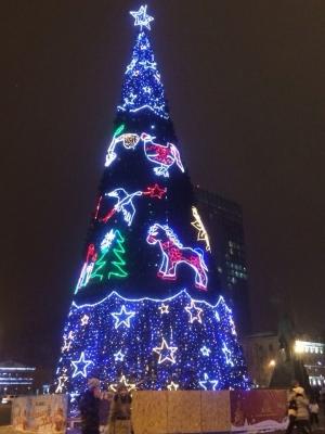 Украина, Донбасс, Донецк, ДНР, Мартынов, Новый год, главная елка, фейерверки