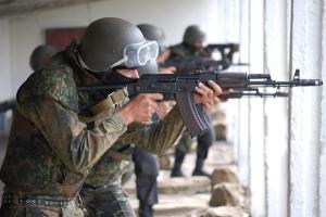 батальон донбасс, нацгвардия, всу, донбасс, восток украины, украина, семенченко