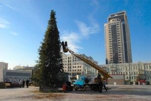 киев, елка на олимпийской, новости украины, общество