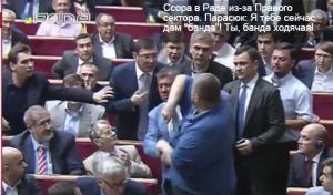 верховная рада, политика, общество, киев, новости украины, луценко, мосийчук