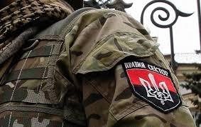 правый сектор, политика, армия украины, протест, мукачево