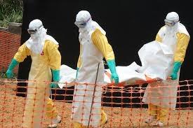 общество, медицина, Эбола, лихорадка, ООН