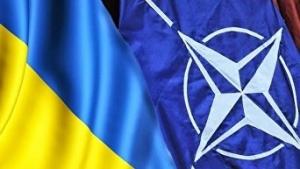 Новости Украины, общество, мнение, НАТО