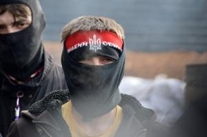 """""""Правый сектор"""", Верховная Рада, КПУ, """"Партия регионов"""""""