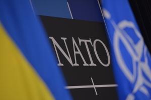 Украина,  политика, НАТО, общество, членство