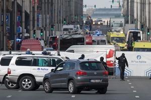 брюссель, украина, шкиряк, теракт, происшествия, общество