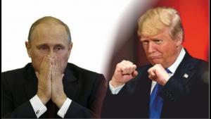 Украина, политика, общество, Небоженко, мнение, Трамп, Путин