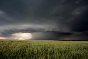 непогода в Черниговской области, детей поднял смерч, гроза и град