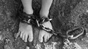 криминал, Украина, Андрей Гаманюк, нацполиция, торговля, рынок, продажа, дети, люди, рабство, украинцы