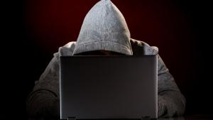 сбу, хакер, ограбление, криминал, украина, происшествия, общество, интернет, провайдер, адамант, вирусы, елена гилянская