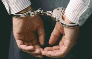 ИноСМИ, задержание чиновников, показуха, глава ГСЧС Украины