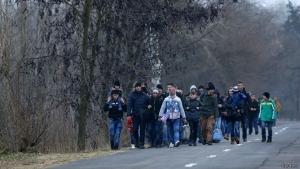 венгрия, мигранты, кризис, европа, общество