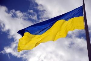 """""""ДНР"""", Донецк, украинский флаг, подстилка, происшествия, фото, видео"""