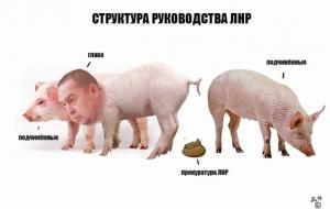 Украина, Донецк, Луганск,общество, ДНР, ЛНР, плотницкий, Бойко
