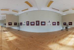 возняк, львов, галерея искусств, экспонаты, картины, книги, пропажа, кража, новости украины