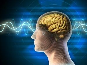 наука, ученые, эксперты, исследование, NASA, эксперимент, прогноз, исследователи, сеть, мозг, мысли