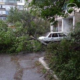 новости Донецка, происшествия, Донецкий горсовет, ДНР, АТО, Донецкий аэропорт, непогода