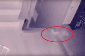 новости, привидение, призрак, ребенок, дом, камеры наблюдения, реальное видео