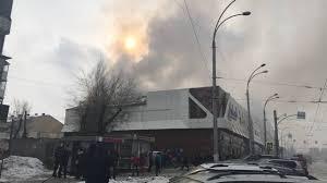 кемерово, торговый центр, зимняя вишня, пожар, зоопарк, животные, происшествия, новости россии