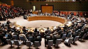 Совбез ООН, постпред, фельдман