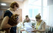 Украинские избиратели поставили Венгрию на место - детали голосования на Закарпатье