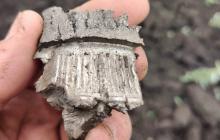 Воронка и остатки дерева: ВСУ показали последствия артудара боевиков из-за спин гражданских