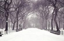Прогноз погоды в Украине: снег до полуметра, сильные морозы до -30, сильные метели