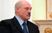 """""""""""Новичок"""" один из первых для него вариантов, если не капитулирует"""", - Пионтковский о сложном выборе Лукашенко"""
