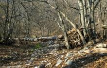 В оккупированном Крыму найден мертвым российский солдат-срочник, которого считали дезертиром