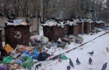 Россия введи мусоровозы: луганчане показали, до чего Пасечник и Пилавов довели Луганск, - фото