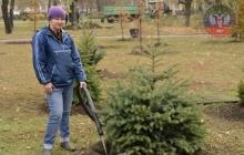 В Донецке Лягин, Пушилин и Пургин высадили «Аллею славы»