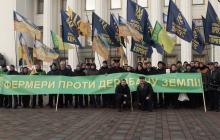 Рынок земли: под зданием Верховной Рады собрались протестующие против продажи земли