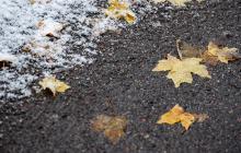 Зима отменяется: появился аномально теплый прогноз на выходные