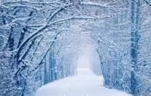 Жителей Украины ждет контрастная погода на Новый год и Рождество: озвучен точный прогноз на зимние праздники