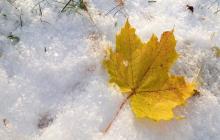 Ветер с мощным антициклоном: синоптик рассказала, чего ждать от погоды в Украине на выходные