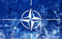 НАТО прервал крупнейшие учения неподалеку от России - военные пояснили причину