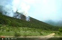 Ялта в огне: в крымском заповеднике пылают тысячи квадратных киллометров - кадры